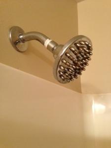 original shower head
