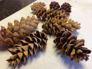 DIY Scented Pine Cones