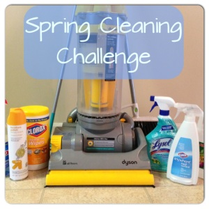Spring Cleaning Challenge 2014